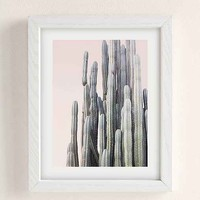 Wilder California Summer Cactus Art Print