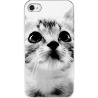 iPhone Case Cat Lover Cat photography Sweet by eireanneilis
