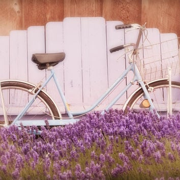 Bicycle Photo Vintage Bike in Lavender Nostalgic by GeorgiannaLane