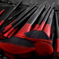 24 Pc LADY IN RED Red Brush Set