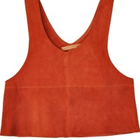 All That Remains Rust Suede Crop Top