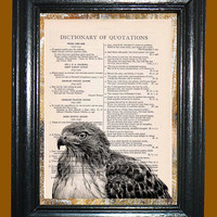 Cooper Hawk -- Vintage Dictionary Book Page Art - Upcycled Page Art - Collage Wall Art - Mixed Media Art