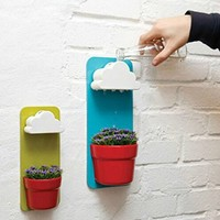 Amazon.com: Plastic Creative Clouds Rainy Pot Wall hung Flower Pot Set