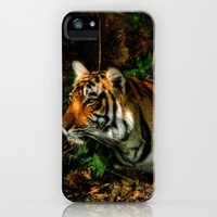 Bengal Beauty iPhone & iPod Case by CoSurvivor