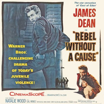 Rebel Without a Cause 11x17 Movie Poster (1955)