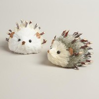 Natural Fiber Frosty Hedgehog Decor, Set of 2