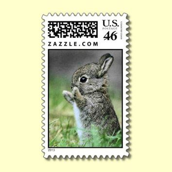 Cute Baby Rabbit Postage Stamp from Zazzle.com
