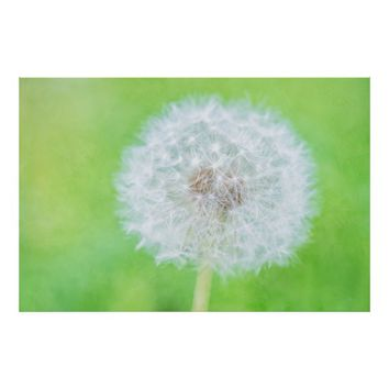 Dandelion - Just Woke Up Beauty Poster