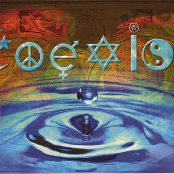 Coexist Waterdrop Peace Poster 24x36
