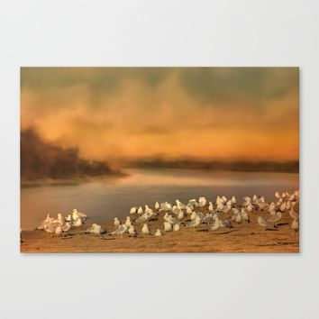 Seagulls On The Beach At Sunset Canvas Print by Theresa Campbell D'August Art