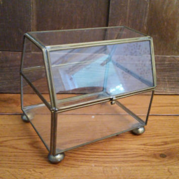 Vintage Brass Vitrine Glass Display Case Jewelry Box