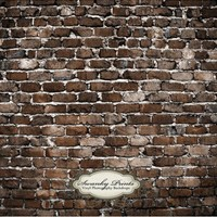 Old Brick Wall, Vinyl Photography Backdrop