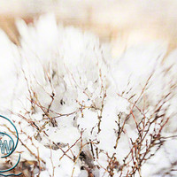 "Ice photo beautiful winter whimsical home decor 8x12"" print"