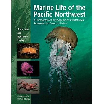 Marine Life of the Pacific Northwest: A Photographic Encyclopedia of Invertibrates, Seaweeds And Selected Fishes