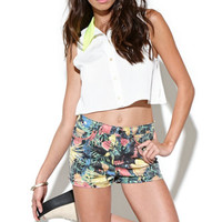 Insight Skater Shorts at PacSun.com