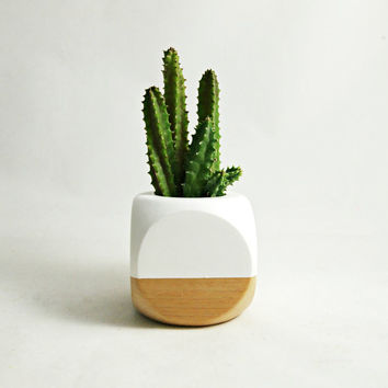 Geometric Succulent Cactus Planter // White + Wood Colorblock (Plant Not Included)
