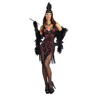 Dreamgirl Womens Dames Like Us Halloween Party Flapper Costume