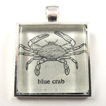 Blue Crab Vintage Dictionary Illustration Pendant, in Glass Tile Square