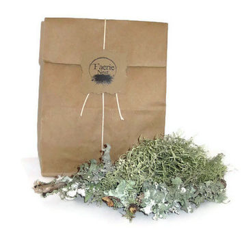 Terrarium Lichen,  Natural Moss,  Terrarium Supply,  Lichen Sticks, Natural Moss and Lichen