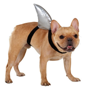 Top Pawr Shark Fin Costume Costumes From Pet Smart  sc 1 st  Meningrey & Petsmart Shark Costume - Meningrey