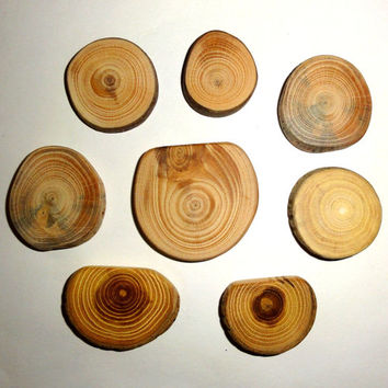 Wood slices discs jewelry supply findings. Rustic wedding natural wood, jewelry making parts. Magnets, brooches, earrings, pendants, tags...
