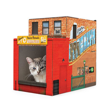 Brooklyn Pet House | Cat House, New York Architecture