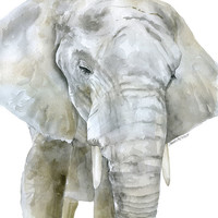 Elephant Watercolor Painting Giclee Print Reproduction