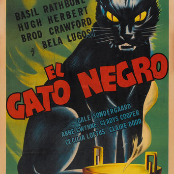 The Black Cat El Gato Negro Horror Movie Poster