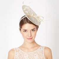 Ivory small saucer bow fascinator at debenhams.com