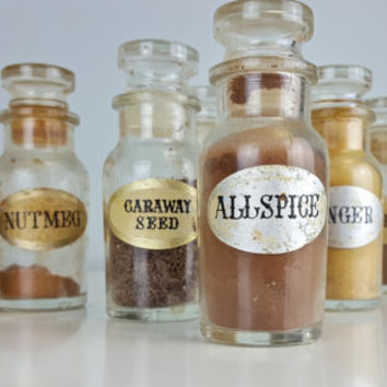 Set of 8 Glass Spice Jars, Glass Apothecary Jars with Stopper, Small Apothecary Jars, Vintage Spice Jars, Spice Storace, Farmhouse Decor