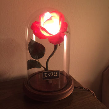 "The Perfect Valentines gift, ""Belle"" Enchanted Rose Beauty and the Beast Flower lamp, Bell Jar,Cloche,glass dome, romantic nightlight"