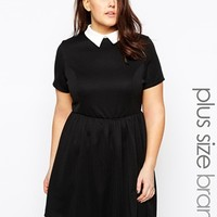 New Look Inspire Contrast Collar Skater Dress