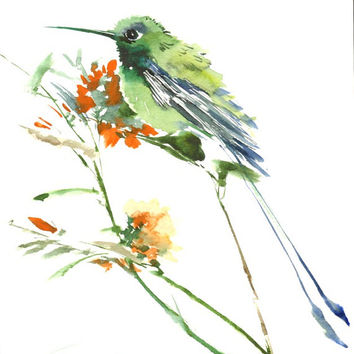 Hummingbird, Original watercolor painting, 12 X 9 in, green white wall art, bird painting