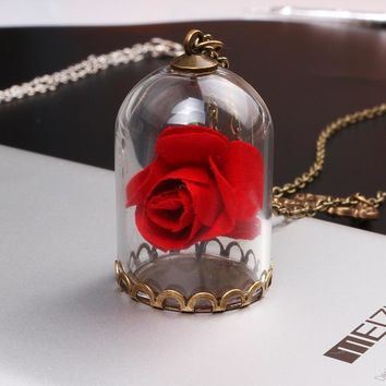 Beauty and the Beast Necklace Vintage Enchanted Rose in Terrarium Bottle and Mirror Charm Necklaces Pendants for women jewelry