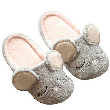 Aibearty Womens and Girls Cute Mouse Slippers AntiSlip Soft Sole House Slippers Indoor Shoes