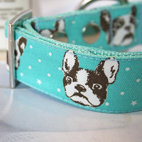 "Mint Blue FRENCHIE French Bulldog Dog Collar 1 1/4"" Inch Wide"