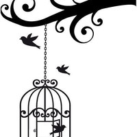 Bird cage Vinyl Decal