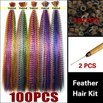 Fashioncity 100 PCS Colorful Synthetic 16 inch Feather Hair Extensions Beads Hook KitFC11312 = 1651189124