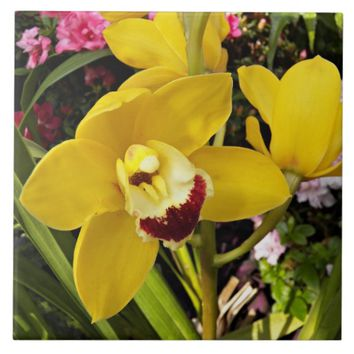 Yellow Boat Orchid Floral Tile