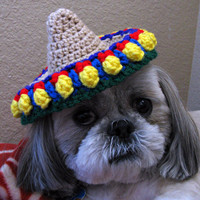Dog Sombrero, sombrero hat, pet costume- small dog