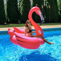 "Flamingo 78"" Float"