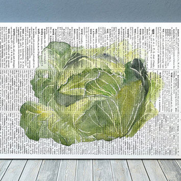 Kitchen art Cabbage poster Vegetable print Watercolor print RTA2158