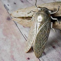 Gold Brooch Cicada Unusual Insect Bug Wings Unisex, Gifts under 20, Ready to ship, Gift Box