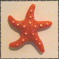 Red Starfish Polymer Magnet
