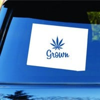 Dabbledown Decals Colorado Grown State Shape Weed Leaf Car Truck Window Windshield Lettering Decal Sticker Decals Stickers JDM Drift Dub Vw Lowered Jdm Fresh Detailed Stance Fitment 4x4
