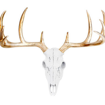 White Mini Deer Skull by Wall Charmers™ Faux Taxidermy - Fake Taxidermy Resin Antler Mount Decor Fauxidermy Plastic Mounted Boho Wall Decor