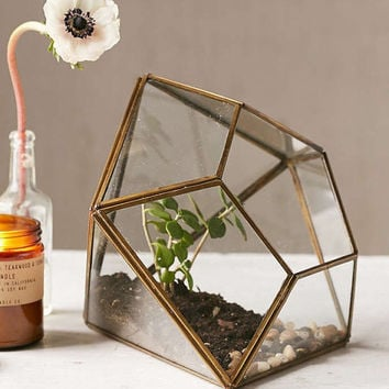 Faceted Brass & Glass Air Plant Terrarium Jewel