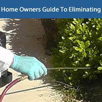Pest Control - The Home Owners Guide To Eliminating Pests