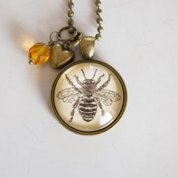 Bee Necklace - Honey Bee Jewelry - Science Drawing - Bee Keeper Pendant - Apiary Necklace - Bee Hive Jewelry - Insect Anatomical Bee Drawing