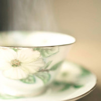Tea Photo Kitchen art mint dogwood teacup print